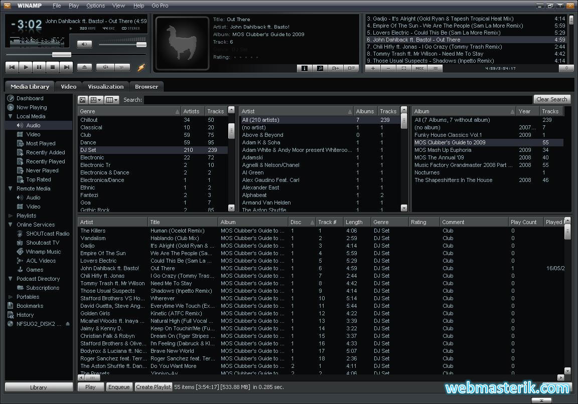 Скриншот в Winamp