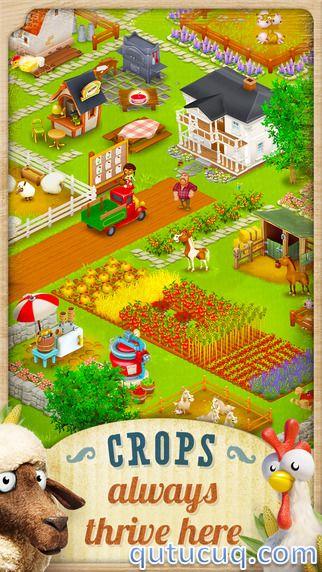 Hay Day ekran görüntüsü