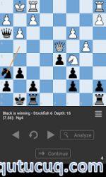 Chess Tactic Puzzles ekran görüntüsü