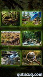 Animal Kingdom ekran görüntüsü