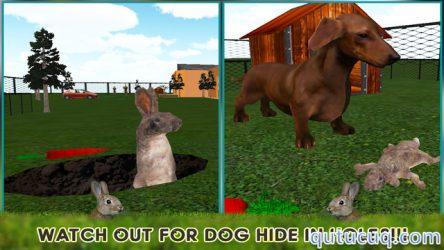 Pet Rabbit 3D Simulator ekran görüntüsü