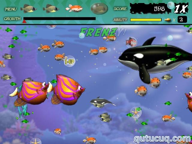 Feeding Frenzy ekran görüntüsü