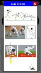 Karate in Brief ekran görüntüsü