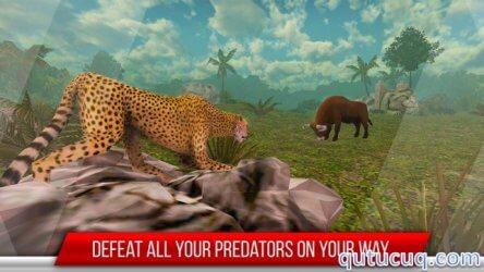 Bull vs Bull Fight ekran görüntüsü