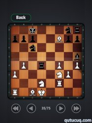 Play Chess ekran görüntüsü